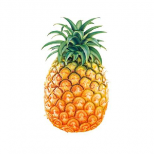 Other-Pineapple-Hi